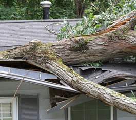 Wind, fallen trees, hail, water leaks, or siding damage are often the result of storms in Southern Oregon. When 'stuff' happens call us first.  541.727.7340